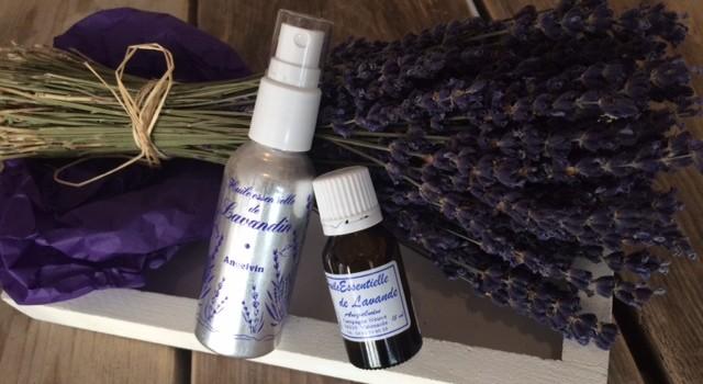Lavendel+Lavendin1